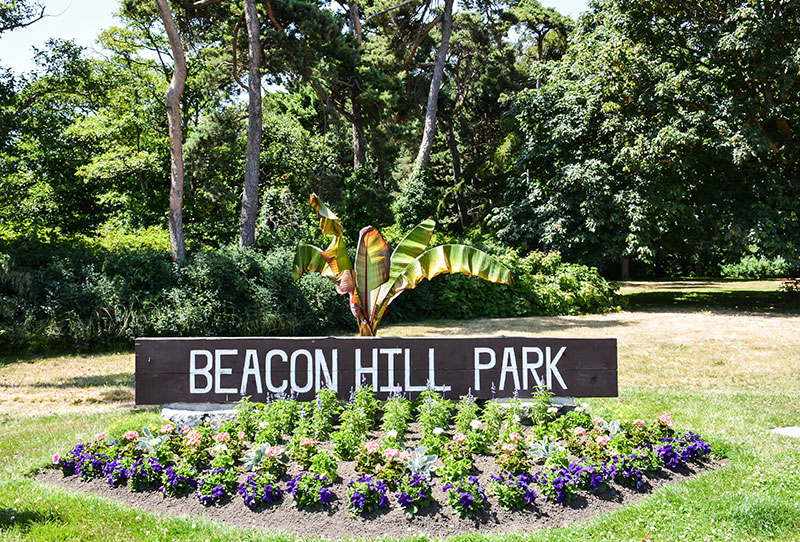 beacon-hill-park