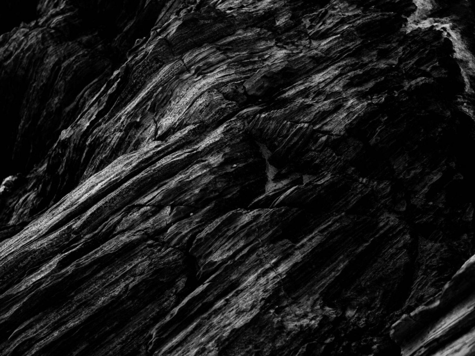 pexels-adrien-olichon-2931270